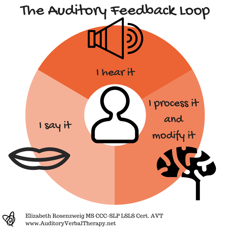 The Auditory Feedback Loop Auditory Verbal Therapy